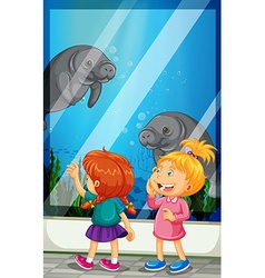 Girls looking at manatee swiming in the tank vector