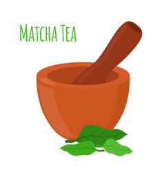 matcha tea mortar pestle cartoon style vector image