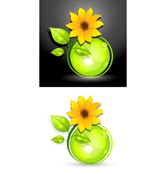 Eco sunflower buttons vector