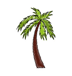 scribble color palm cartoon vector image vector image