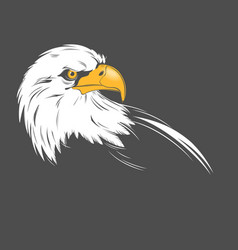 eagle head on a dark background vector image vector image