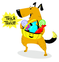 Halloween dog character cute pet with basket of vector