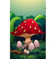 A big red mushroom vector
