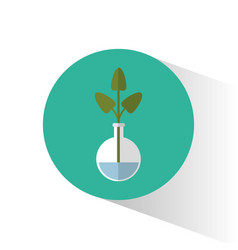 Biology plant testt tube school icon vector