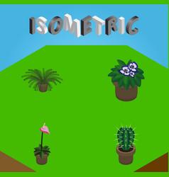 Isometric flower set of flowerpot peyote grower vector