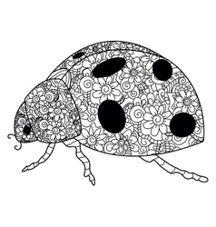Ladybird coloring for adults vector