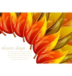 leaves design vector image