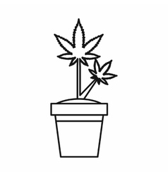 Marijuana plant in pot icon outline style vector image