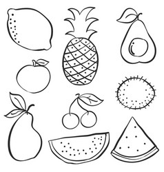 set of fruit hand draw doodle vector image vector image