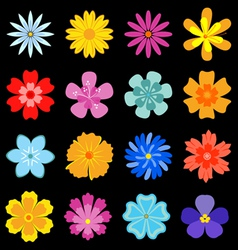 Flower blossom set vector