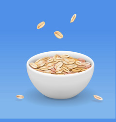 Oatmeal muesli in white bowl realistic vector