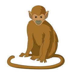 snub nosed monkey icon cartoon style vector image vector image