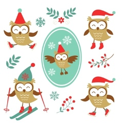 Cute winter owls colorful collection vector