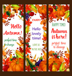 Autumn season banner set with fall harvest frame vector
