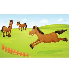 horses on meadow vector image vector image