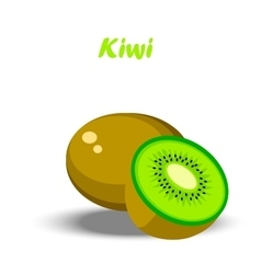 Fresh kiwi and slice vector
