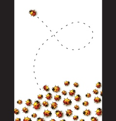 Set of realistic lady bugs vector