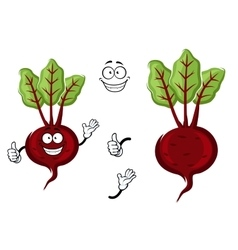 Happy little cartoon beetroot with green leaves vector