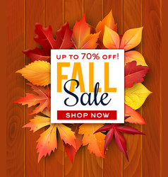 autumn sale foliage leaf poster web banner vector image vector image