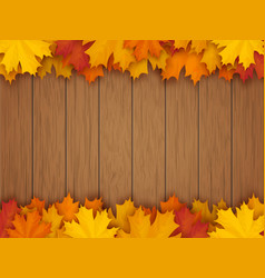 Border from fallen maple leaves vector
