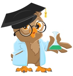 Owl teacher in a blue robe holding a flask vector