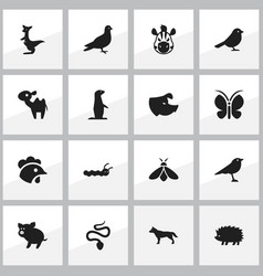 Set of 16 editable nature icons includes symbols vector