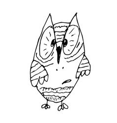 Strange funny surprised owl line art hand drawing vector