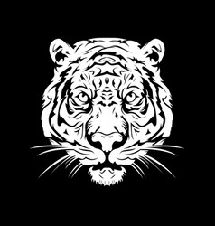 tiger head white vector image vector image