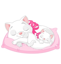White Cats vector image