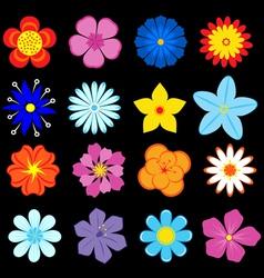 floral blossoms set vector image