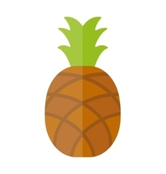 Pineapple isolated tropical healthy fruit sweet vector