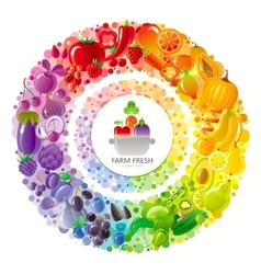 Vegetarian rainbow plate withe fruits vegetables vector