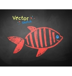 Chalked drawing of fish vector image vector image