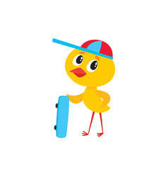 cute baby chicken boy character holding skateboard vector image vector image