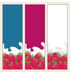 Set of vertical banners with berry raspberries vector