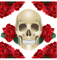 Human skull modern style and roses vector