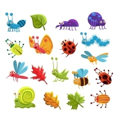 Insect And Leaves Collection vector image
