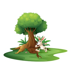 A rabbit playing near the big tree vector image vector image