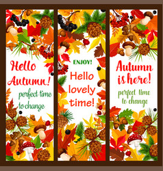 autumn leaf banner with fall season nature frame vector image vector image