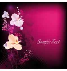 Background for text with orchids vector image vector image