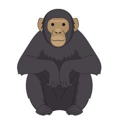 chimpanzee icon cartoon style vector image vector image