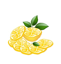 Half and sliced of lemon on white background vector