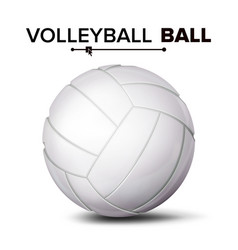 realistic volleyball ball classic round vector image vector image