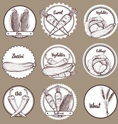 Sketch set of vegetable logotypes vector image