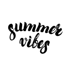 Summer vibes hand written lettering vector image