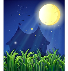 The carnival at night vector image