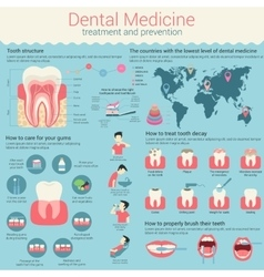 Dental medicine infographic or infochart layout vector
