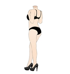 A mannequin in the underwear department of a store vector