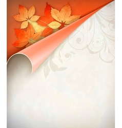 Autumn corner card vector