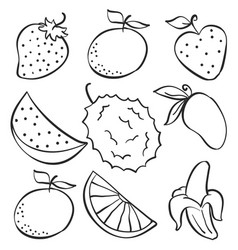 set fruit fresh doodle style vector image vector image
